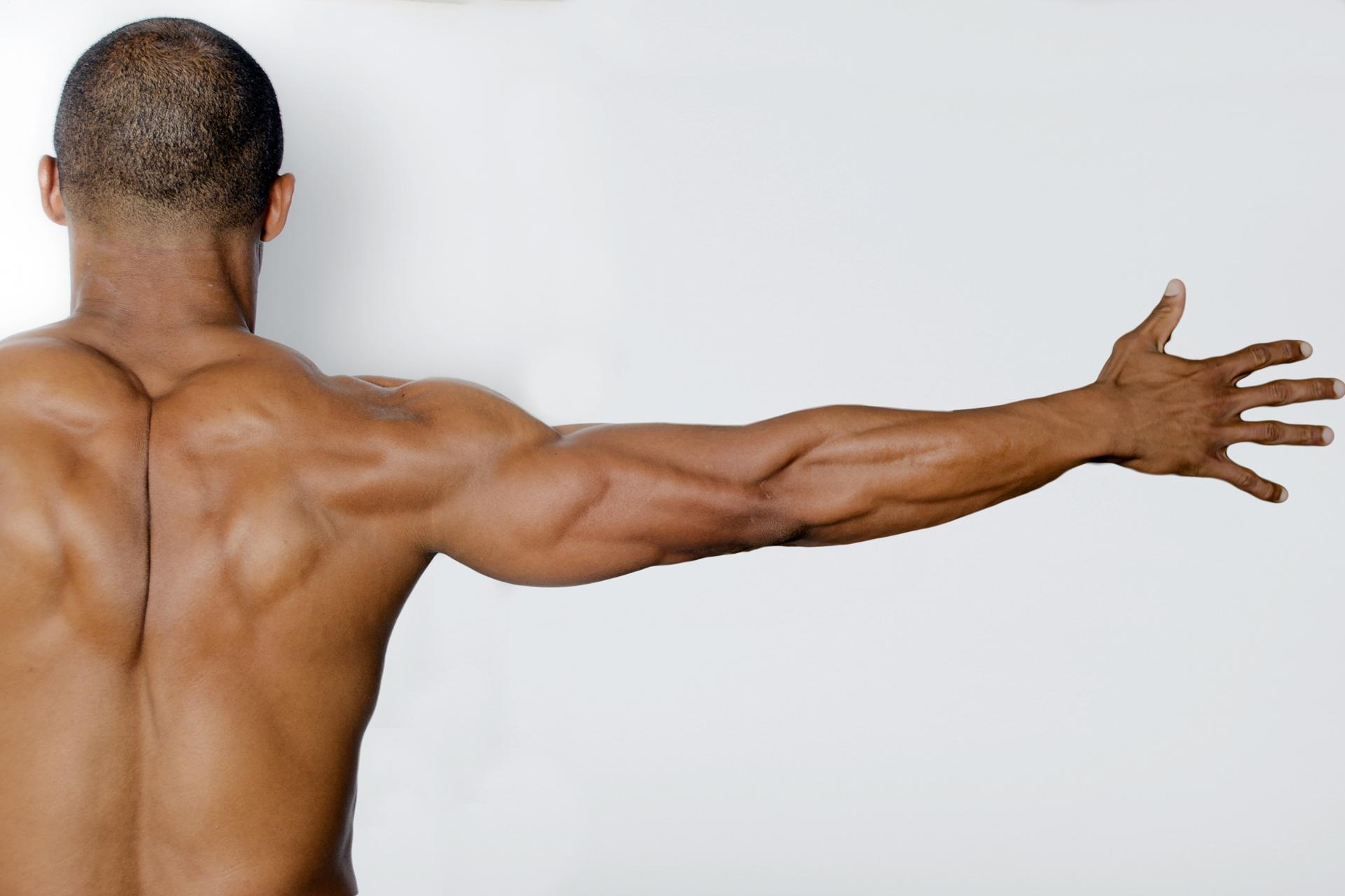 運動・筋肉・筋トレの関連カテゴリ